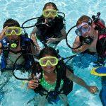 Padi Seal Team