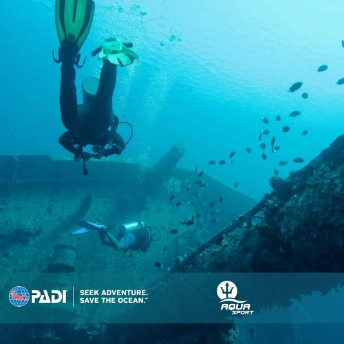 Advanced Open Water Diver online